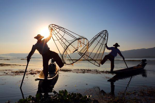 Die bekannten Einbaufischer vom Inle Lake mit einem Netz zum Sonnenuntergang - berühmt am Inle See.
